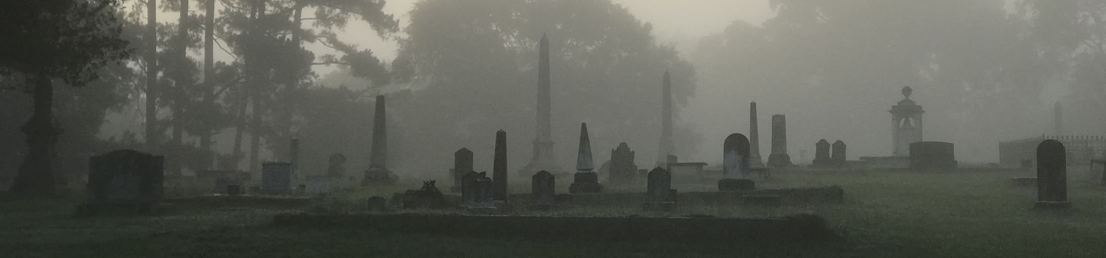 fog over Old Cemetery