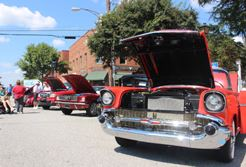 Classic cars lined up for show.
